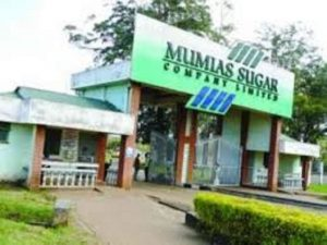 Mumias Sugar factory and headquarters. The company has laid off all its employees. www.businesstoday.co.ke