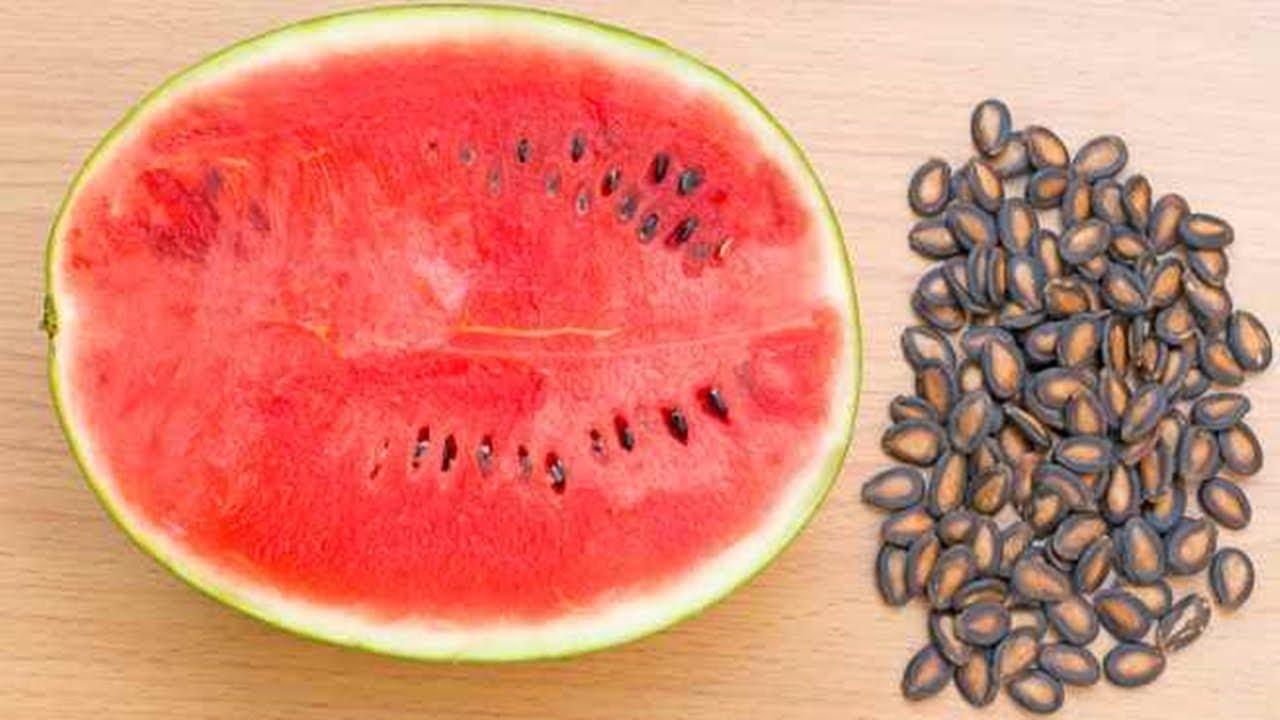 Watermelon seeds enhance your libido - Business Today News