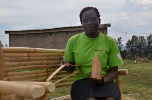 Bamboo farming: The seven things you need to know - Business Today Kenya
