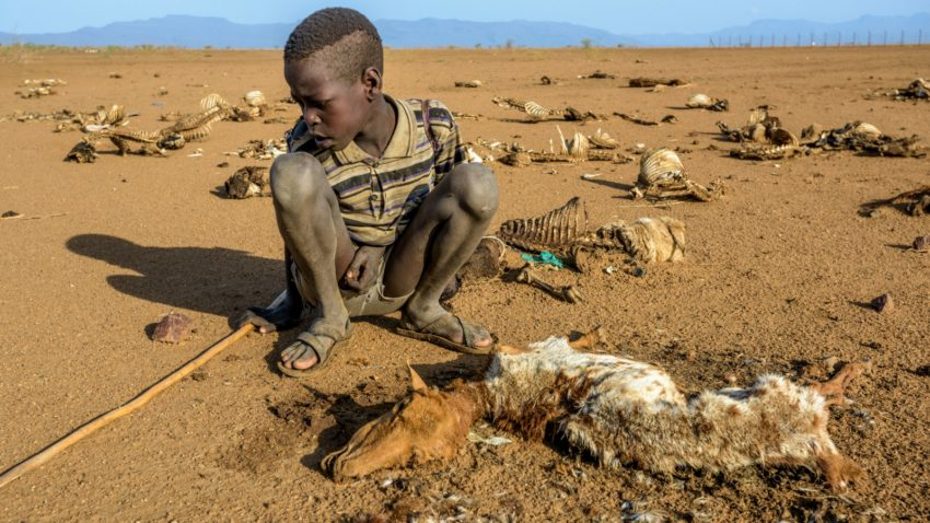 Image result for drought in kenya