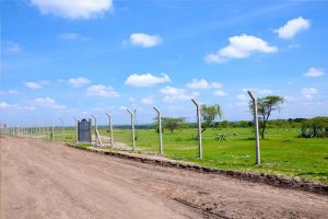 Affordable land on Kangundo road www.businesstoday.co.ke