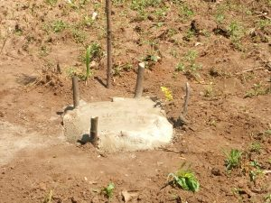 Cost of living in Kenya hen burial www.businesstoday.co.ke