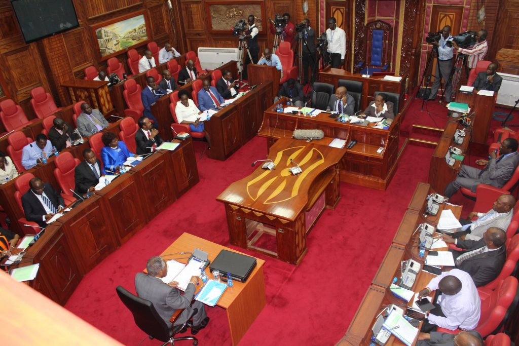 Senate pictured during a past session. The house will on December 21, 2020 meet to consider the Tea Bill.