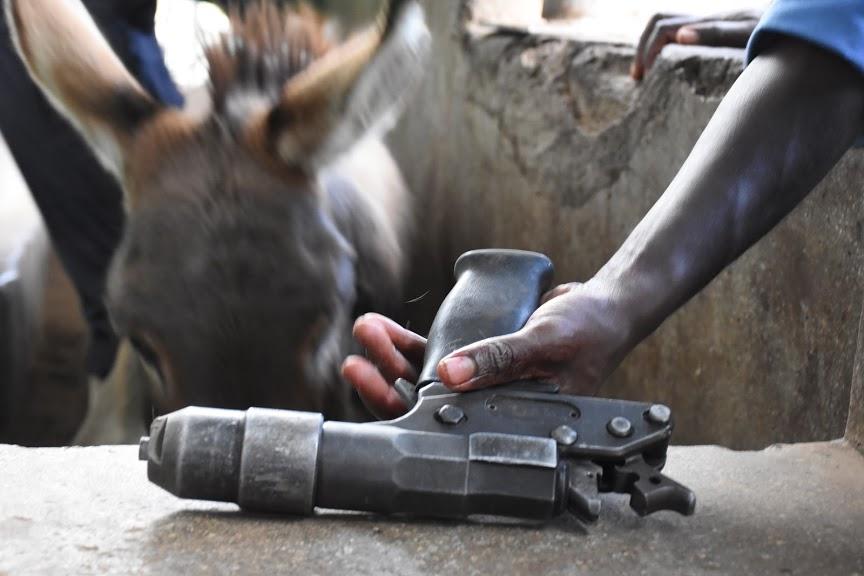 A bolt gun used to kill donkeys at a slaughterhouse in Kenya. www.businesstoday.co.ke