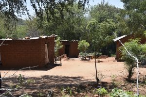 Reuben Musumbi's homestead in Ivinga-Nzia, Kitui county. www.businesstoday.co.ke