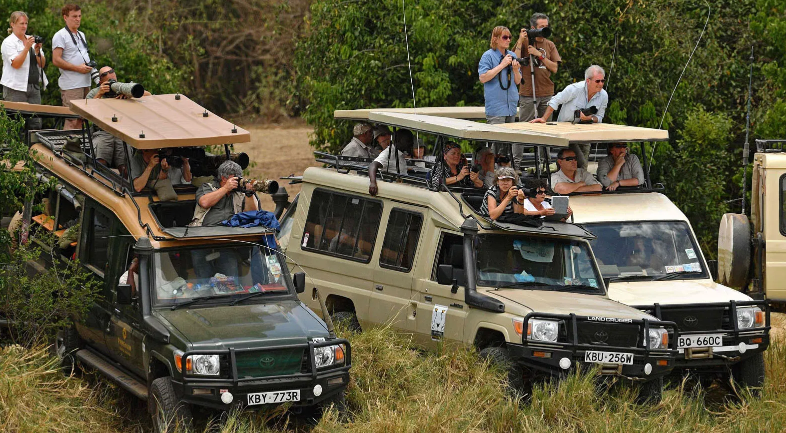 Is kenya safe for tourist - Business Today