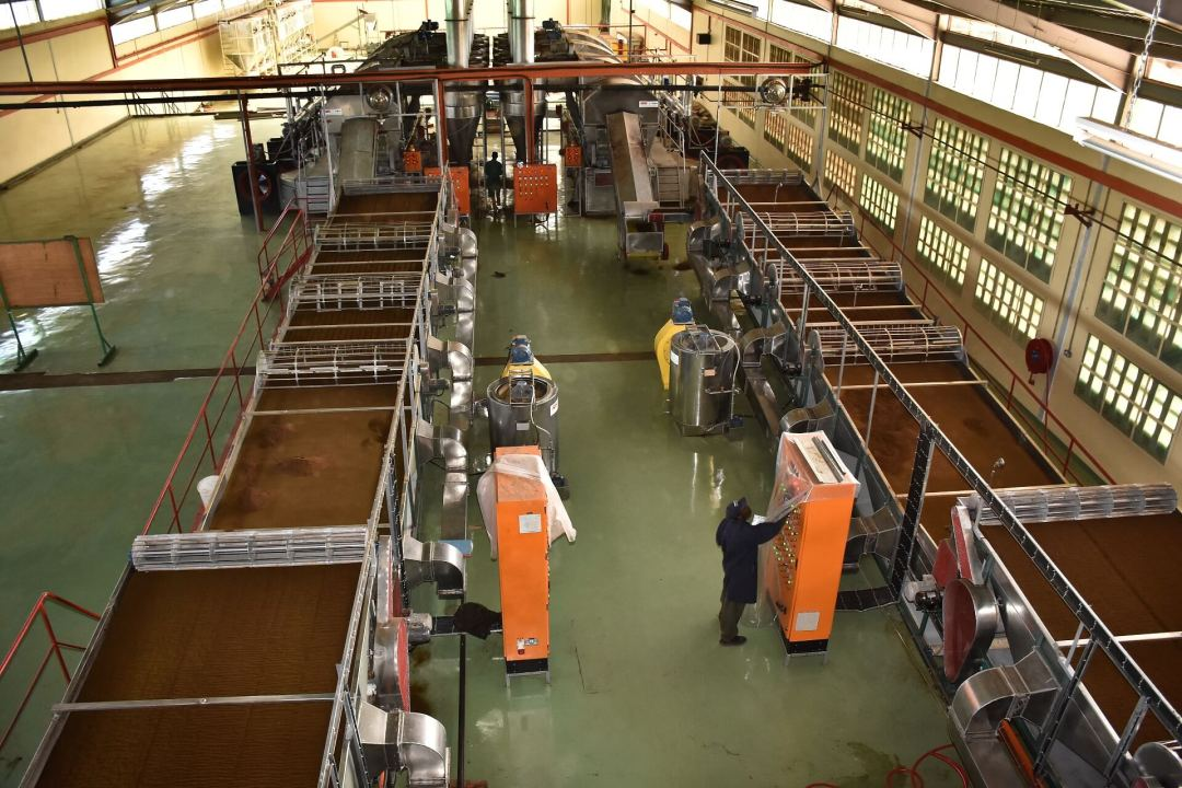 Inside a KTDA-managed tea factory