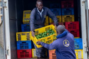 Twiga workers packing fresh produce in a truck for delivery. The startup is planning an expansion drive across Africa in 2021.