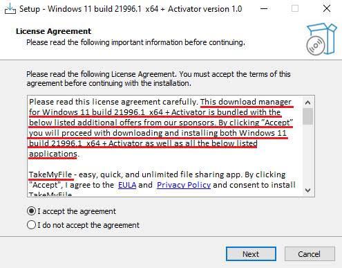 An example of a fake Windows 11 installer