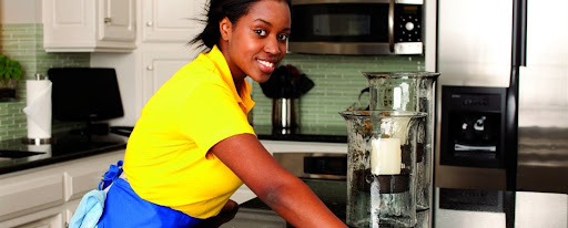 Domestic workers play an important role in economic growth and development -- particularly in the urban and peri-urban areas of the country. [Photo/ Vineshousemaids.com]